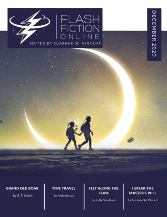 Flash Fiction Online December 2020