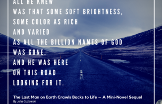 Quote from John Guzlowki's flash fiction mini-novel