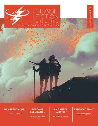 FlashFictionOnlineFebruary2020Cover