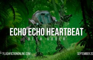 Echo Echo Heartbeat